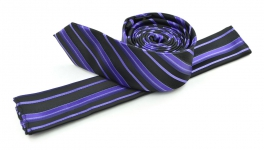 SG-TIE-20-9024-E-Purple
