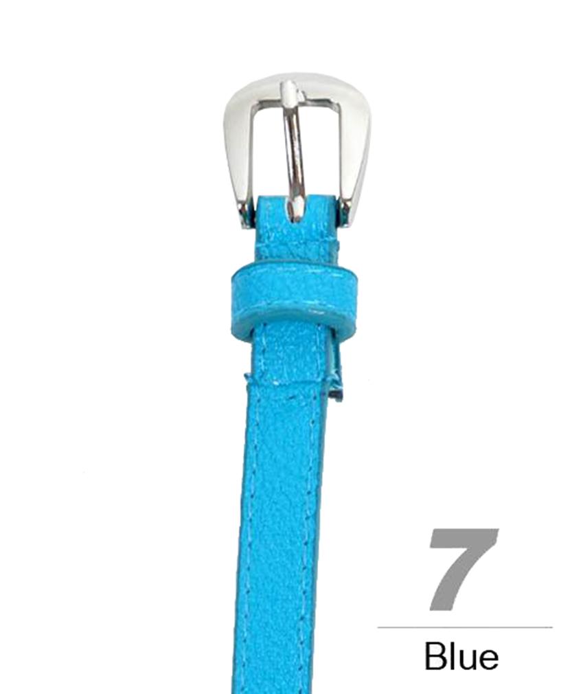 Earthy Tone Women's Skinny Belt Blue-Large