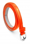 BB-Belt-7033-Orange/Large