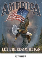 DS-TIN-AMERICAN-1668-FREEDOM