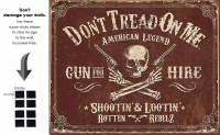 DS-TIN-AMERICAN-2007-GUNFORHIRE