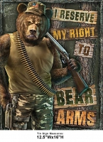 DS-TIN-AMERICAN-2023-BEARARMS