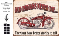 DS-TIN-BIKE-1637-INDIANNEVERDIE