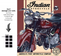 DS-TIN-BIKE-2009-INDIAN1948