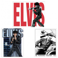 DS-TIN-ELVIS-SET-E