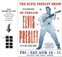 DS-TIN-ELVIS-1197-ELVISPRESLEYSHOW