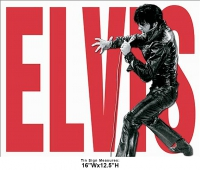 DS-TIN-ELVIS-1890-ELVISLEATHER