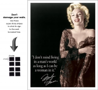 DS-TIN-HOLLYWOOD-1492-MARILYNMANSWORLD