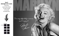 DS-TIN-HOLLYWOOD-1532-MARILYN