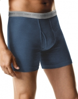 HANES-MA-HANES-5BRIEF-BLUE-L
